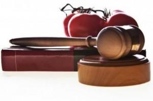 Curso gratis de introducción al derecho