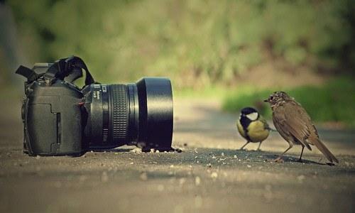 Guía de fotografía digital