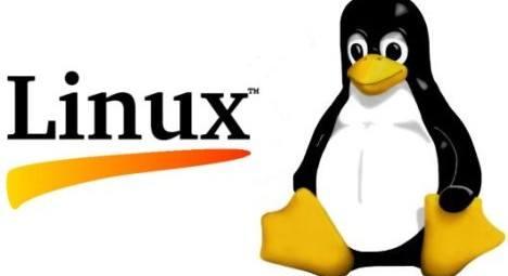 Manual de Linux gratis