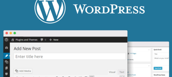 Tutorial como crear un blog con WordPress